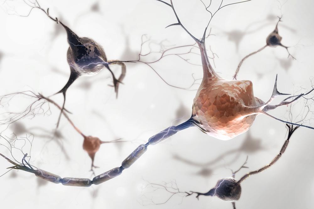 Neurologie (Privatpraxis)